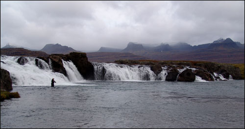 The Upper Beljandi Falls are already with good number of salmon in the pool!